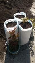 იყიდება მიწა ყვავილებისთვის თბილისში   ikideba miwa