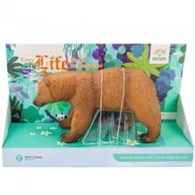 Chita • ჭიტა ცხოველების ნაკრები დათვი