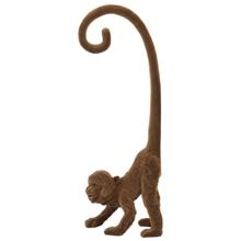 Ambience 6979683 ოქროსფერი მაიმუნი