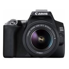 Canon EOS 250D ფოტოაპარატი