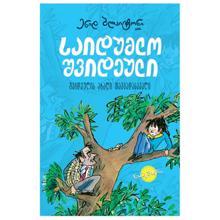"""სულაკაურის გამომცემლობა ენიდ ბლაიტონი """"საიდუმლო შვიდეული: საიდუმლო შვიდეულის თავგადასავალი"""" (წიგნი 2)"""