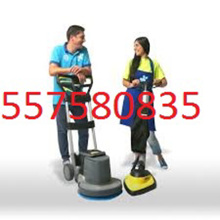 damlagebeli tbilisshi-დამლაგებელი თბილისში-557580835